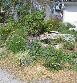 Florida Butterfly Garden Design