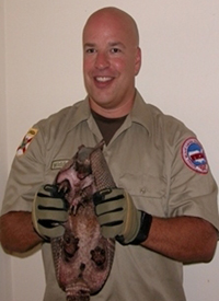 Animal removal and wildlife trapping in Tampa St Petersburg Clearwater Pinellas Pasco Hillsborough and Manatee counties.